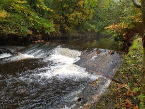 Weir - Before