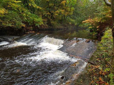 Final Weir Removal of 2020